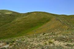 Collines et montagnes, Sartaly, Kirghizistan Images stock