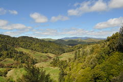 Collines et paysage du Nouvelle-Zélande avec des prés Photographie stock