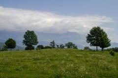 Collines et prés avec les arbres, les montagnes et les nuages verts Photographie stock