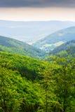 Collines et vallée brumeuse dans les montagnes en pierre Vaste panorama de paysage pittoresque de campagne dans Sudetes, Pologne  Photo libre de droits