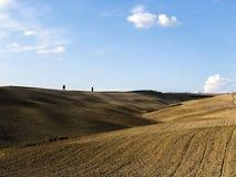 Collines incroyables de la Toscane, en Italie photo stock