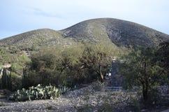 Collines semi-désertiques image stock