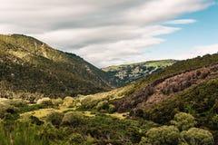 Collines, vallées et fermes au Nouvelle-Zélande photographie stock