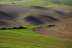 Collines vertes de la Toscane Images stock