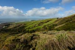 Collines vertes de roulement le long de la côte du Big Sur photographie stock libre de droits