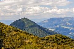 Collines vertes et crêtes de montagne carpathienne dans le jour ensoleillé d'été Photos libres de droits