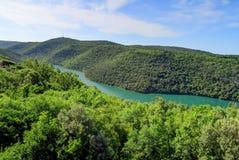 Collines vertes et Jade Colored River dans la région d'Istria de la Croatie o photos libres de droits