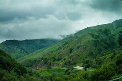Collines vertes, forêt et ciel nuageux Image libre de droits