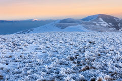 Collines voyantes de montagnes carpathiennes Images stock