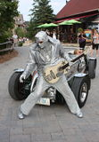 Collingwood Elvis Royaltyfri Bild