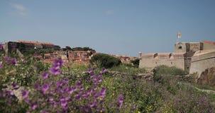 Collioure, France Vue de couchette dans le port au jour de Collioure Hilly Cityscape In Sunny Spring clips vidéos