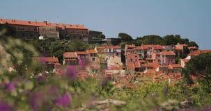 Collioure, Francia Visualizzazione dall'ancoraggio in porta al giorno di Collioure Hilly Cityscape In Sunny Spring archivi video