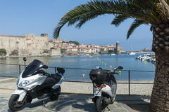 Collioure harbour castle Stock Photo