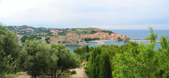 Collioure panorama Stock Image