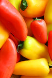 Colllection del fondo rosso e giallo fresco e dolce dei peperoni Immagini Stock