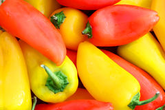Colllection of Fresh, Sweet Red and Yellow Peppers Background Royalty Free Stock Photo