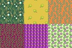 Colllection van patronen Stock Afbeelding
