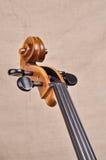Collo e rotolo del violoncello Fotografia Stock Libera da Diritti