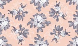 Collochi il modello floreale di modo delle rose selvatiche di blogging dell'intestazione, fondo del fiore Fiori grigi su un fondo illustrazione di stock