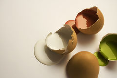 Collor eggs. Egg shell's with gloss paint Stock Images