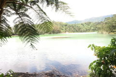 Collorfull Lake. A beautifull view at dieng wonosobo Stock Photography