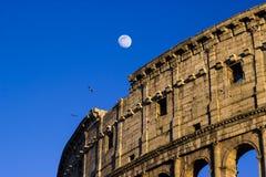 Colloseum Roma Imagen de archivo
