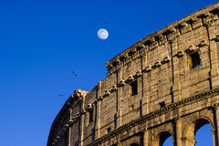 Colloseum Rome Stock Image