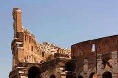 collosseo forum czerep rzymski Fotografia Royalty Free