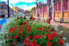 Colmar, Francja - Zdjęcia Royalty Free