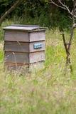 Colmeia da abelha no campo BRITÂNICO Imagens de Stock Royalty Free
