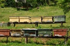 Colmeias de madeira velhas Imagem de Stock Royalty Free