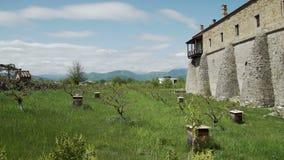 Colmeias perto do monastério de Alaverdi em Geórgia filme