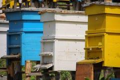 Colmena alineada de la abeja Imágenes de archivo libres de regalías