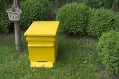 Colmena amarilla Foto de archivo libre de regalías