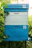 Colmena azul Foto de archivo libre de regalías