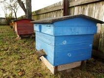 Colmena azul de la abeja Imagenes de archivo