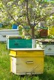 Colmena con las abejas imagen de archivo