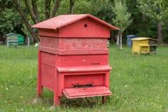 Colmena con las abejas en una granja de la miel Imagen de archivo