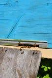 Colmena de la abeja con las abejas en ella Foto de archivo