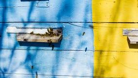 Colmena de la abeja con una matriz, un enjambre de las abejas nacionales para conseguir la miel de los panales fotografía de archivo