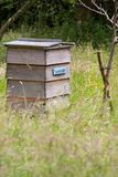 Colmena de la abeja en campo BRITÁNICO Imágenes de archivo libres de regalías