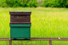 Colmena de la abeja en el campo Fotografía de archivo libre de regalías