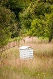Colmena de la abeja en jardín Fotografía de archivo