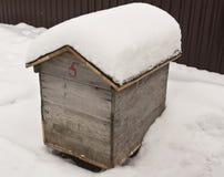 Colmena de la abeja en nieve Imagen de archivo