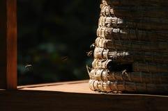Colmena de la paja Imagen de archivo libre de regalías