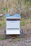 Colmena de las abejas de Farmer's Foto de archivo libre de regalías