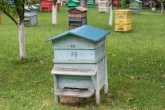 Colmena de madera con las abejas en una granja de la miel Fotografía de archivo libre de regalías
