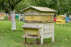 Colmena de madera con las abejas en una granja de la miel Imagen de archivo libre de regalías