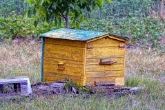 Colmena de madera vieja amarilla en un colmenar en la hierba Fotografía de archivo libre de regalías
