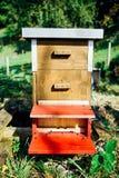 Colmena del marco de madera en jardín orgánico en Sunny Day Fotos de archivo